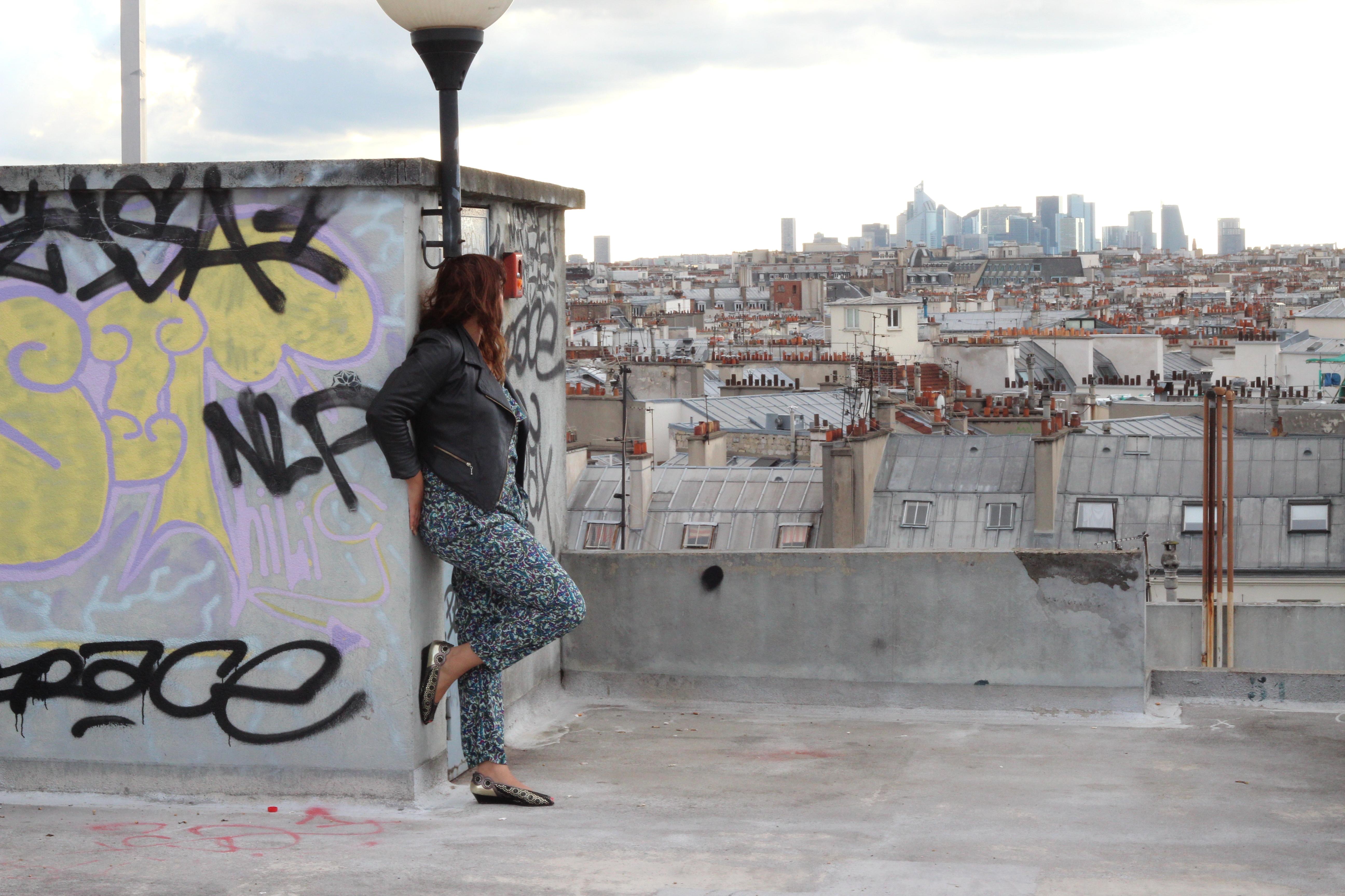 Blogueuse sur les toits de paris for Appartement sur les toits paris