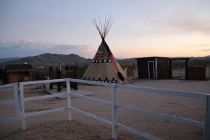 sunset road trip california dream desert joshua valley