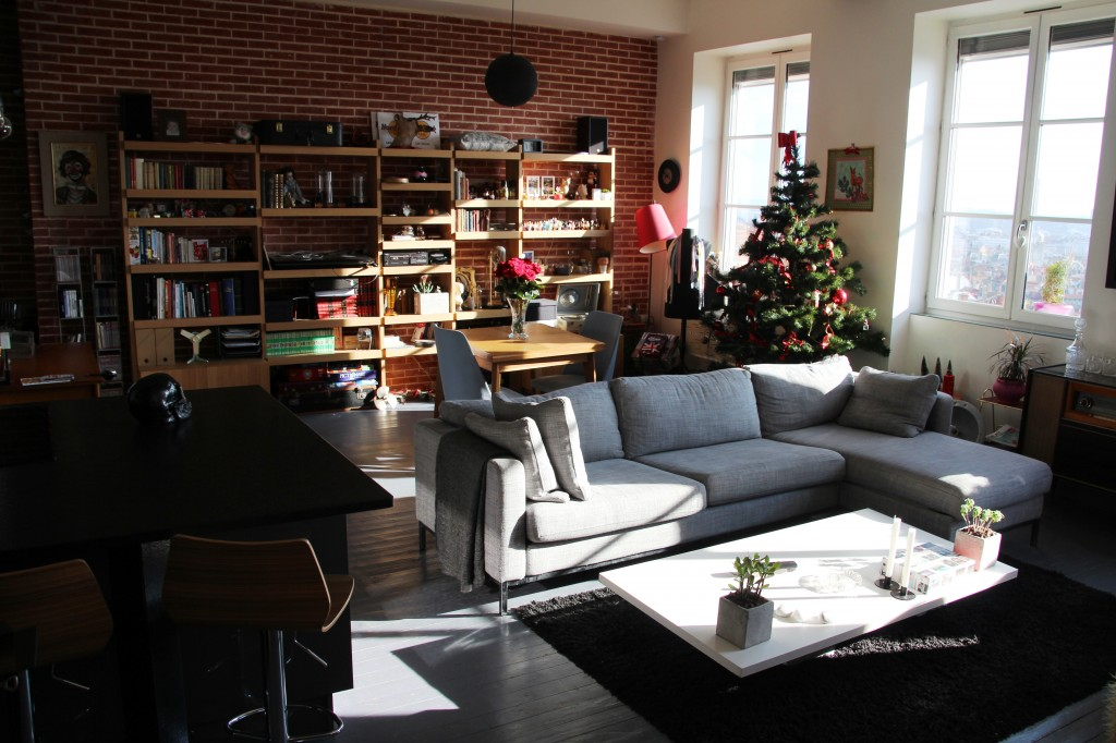 louer un appartement loft lyon. Black Bedroom Furniture Sets. Home Design Ideas