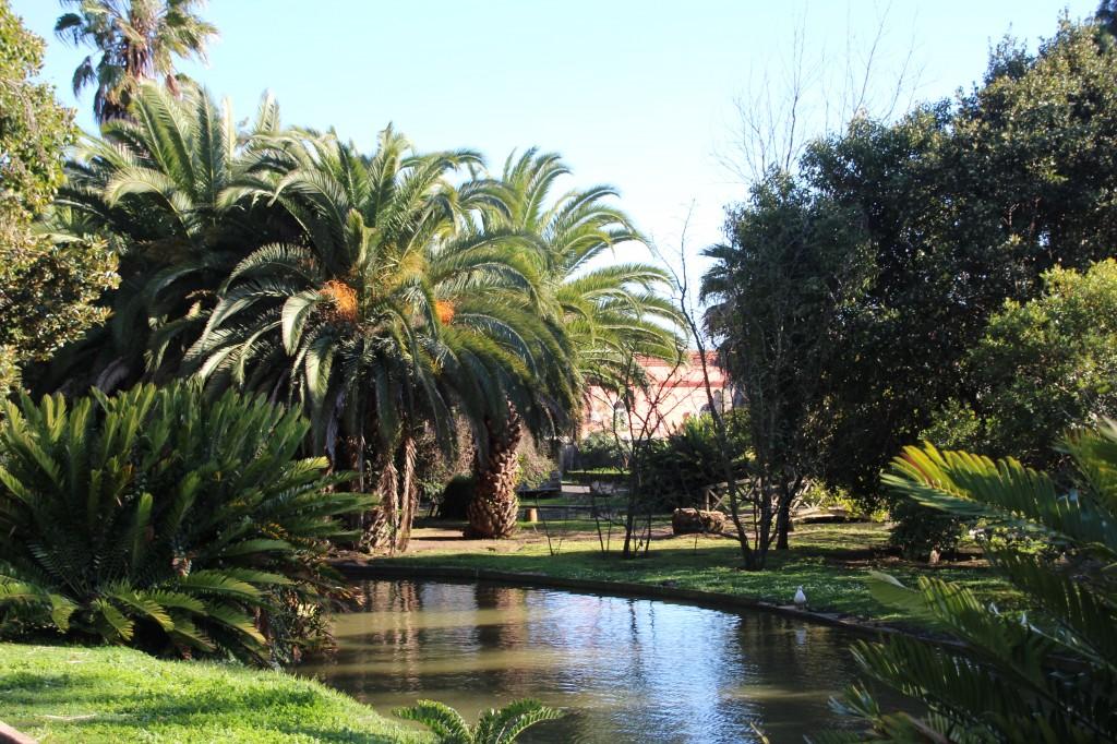 10 Lisbonne Le jardin botanique tropical de Belem blog mode voyage copyright photo www.upupup.f