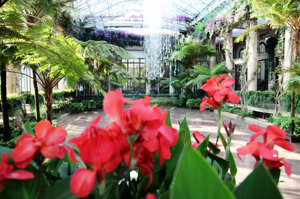 3 Longwood gardens Phildelphie blog mode voyage copyright photo www.upupup.fr