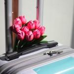 Une valise cabine originale (concours)