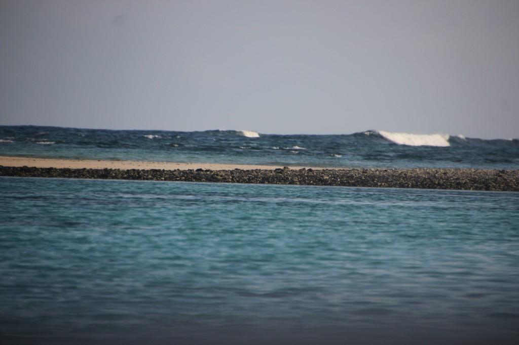 9 (c) upupup.fr Ile des deux Cocos Ile Maurice