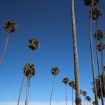 Combiner Los Angeles et Tahiti