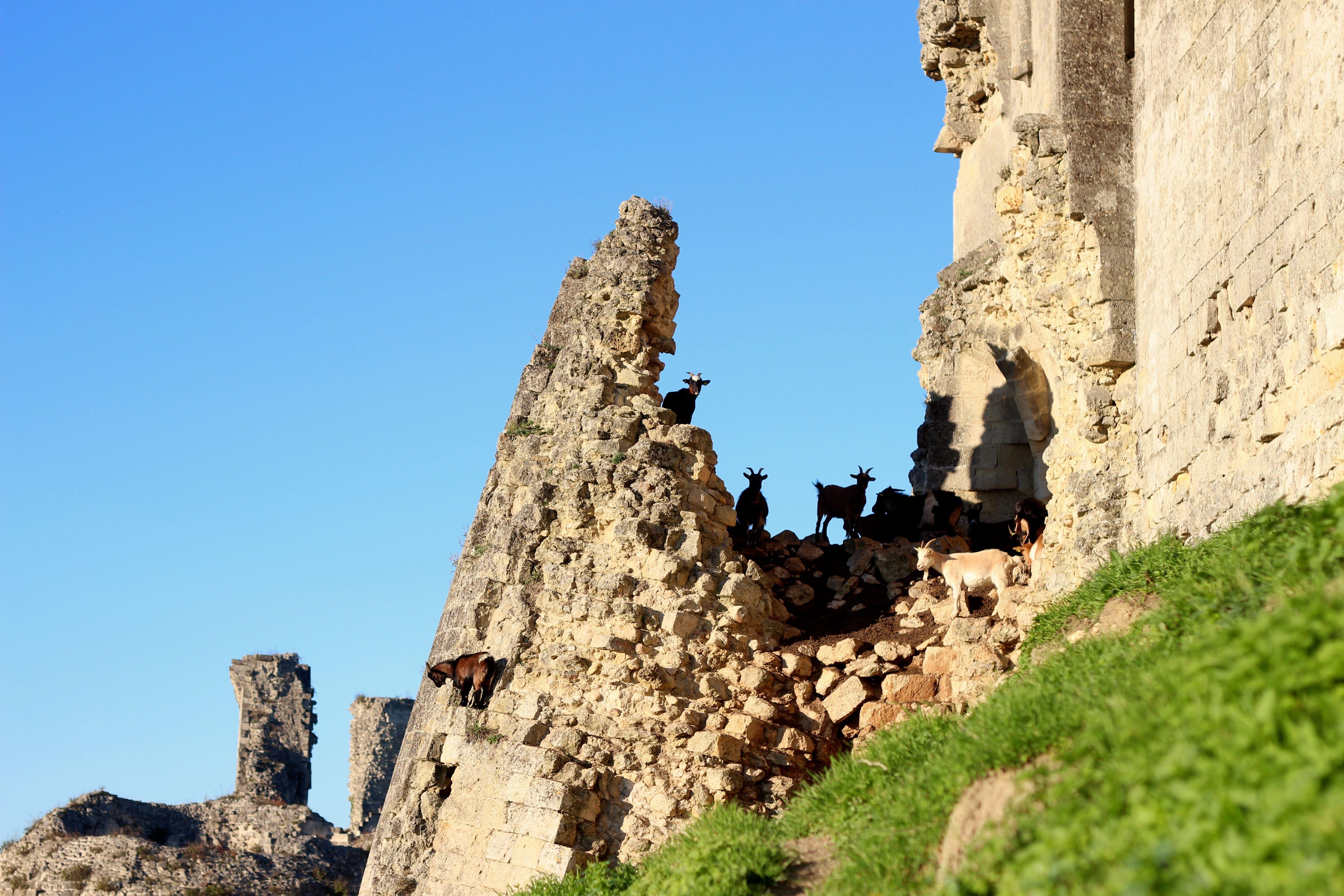 chateau de coucy blog mode voyage upupup.fr 4