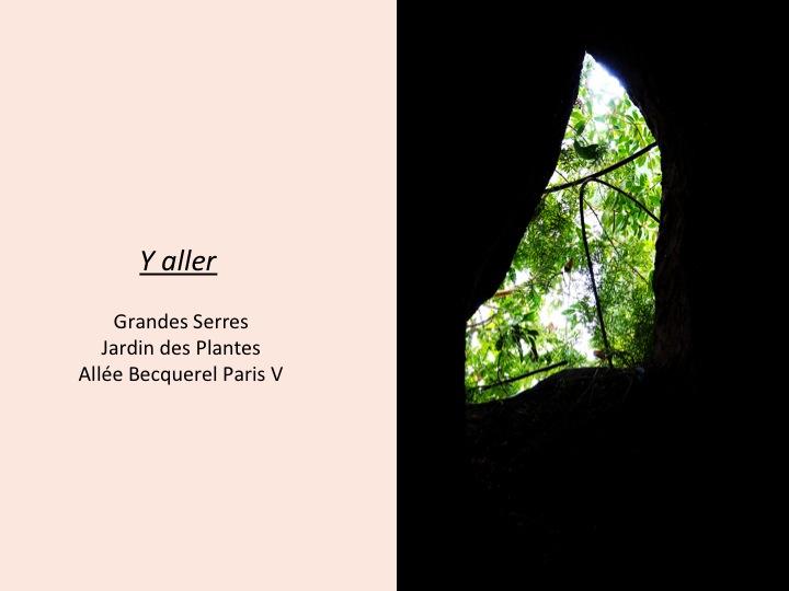 9-serre-jardin-plantes-paris-blog-mode-voyage-upupup-fr
