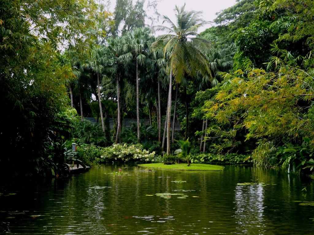 Un jardin botanique en guadeloupe for Jardin botanique guadeloupe