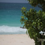 Un vélo entre les vagues (Barbade)